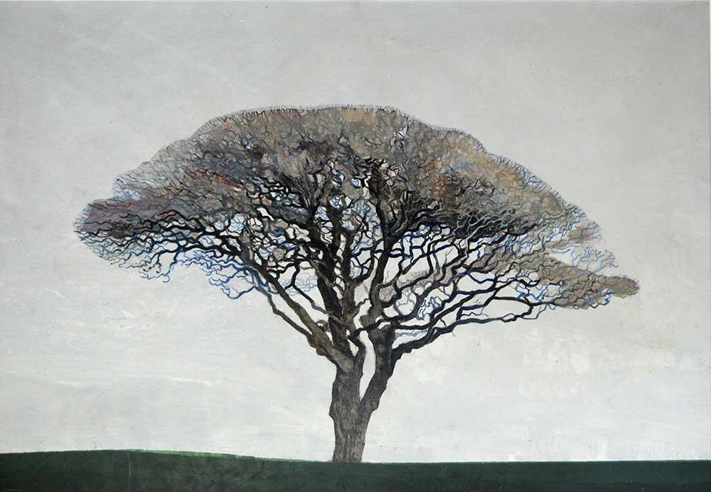 The Tree - 70cm x 100cm - Oil on board